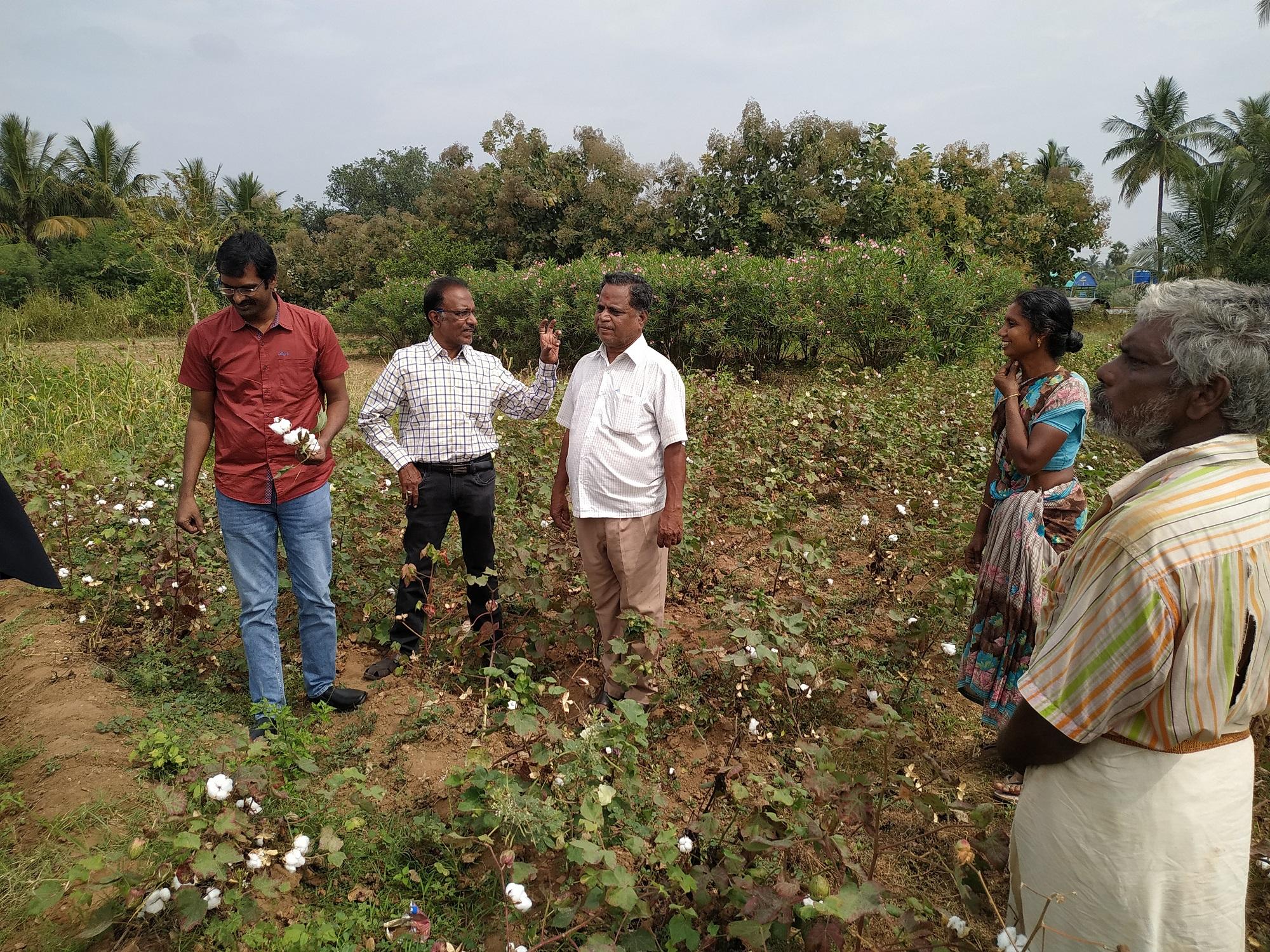 Organic cotton artisan pic