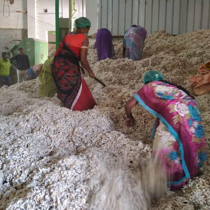 Organic Cotton Processing
